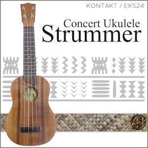 Concert Ukulele Strummer